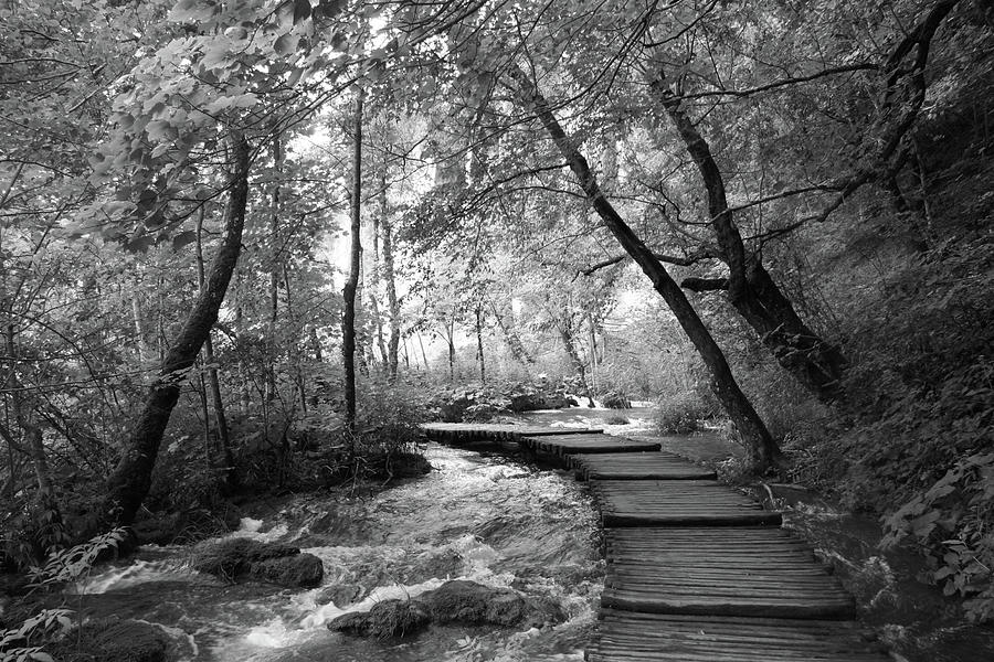 Plitvice In Black And White Photograph