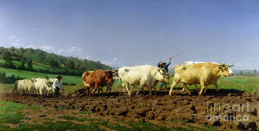 Ploughing Painting - Ploughing In Nivernais by Rosa Bonheur