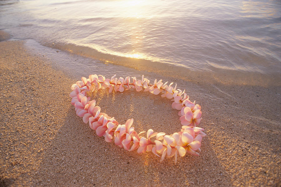 Afternoon Photograph - Plumeria Lei Shoreline by Mary Van de Ven - Printscapes