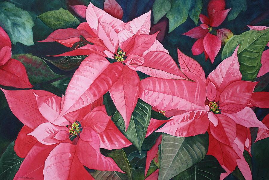 Poinsettias Painting - Poinsettia Trio by Tina  Sander
