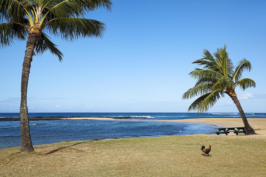 Poipu Photograph - Poipu Beach by Kelley King