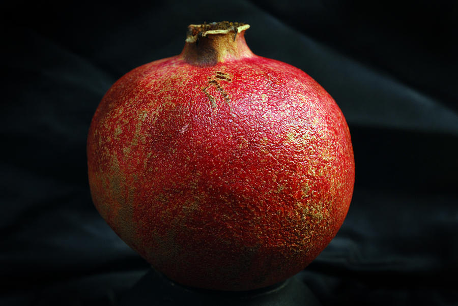 Pomegranate Fruit Photograph - Pomegranate by Terence Davis