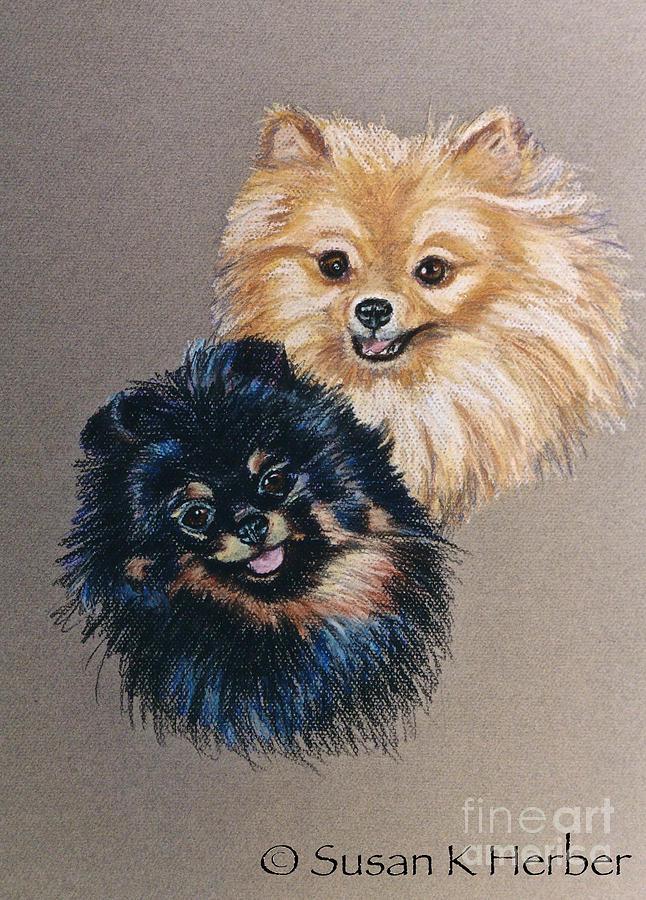 Pomeranian Pastel - Pomeranian Pair by Susan Herber