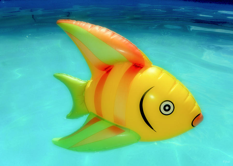 Fish Photograph - Pool Toy by Tony Grider