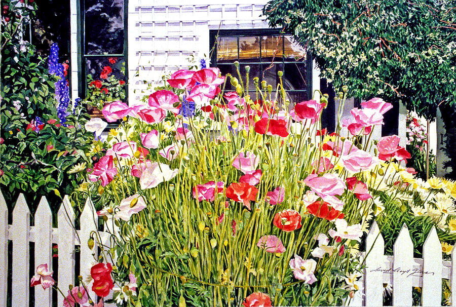 Watercolor Painting - Poppies On Niagara Street by David Lloyd Glover