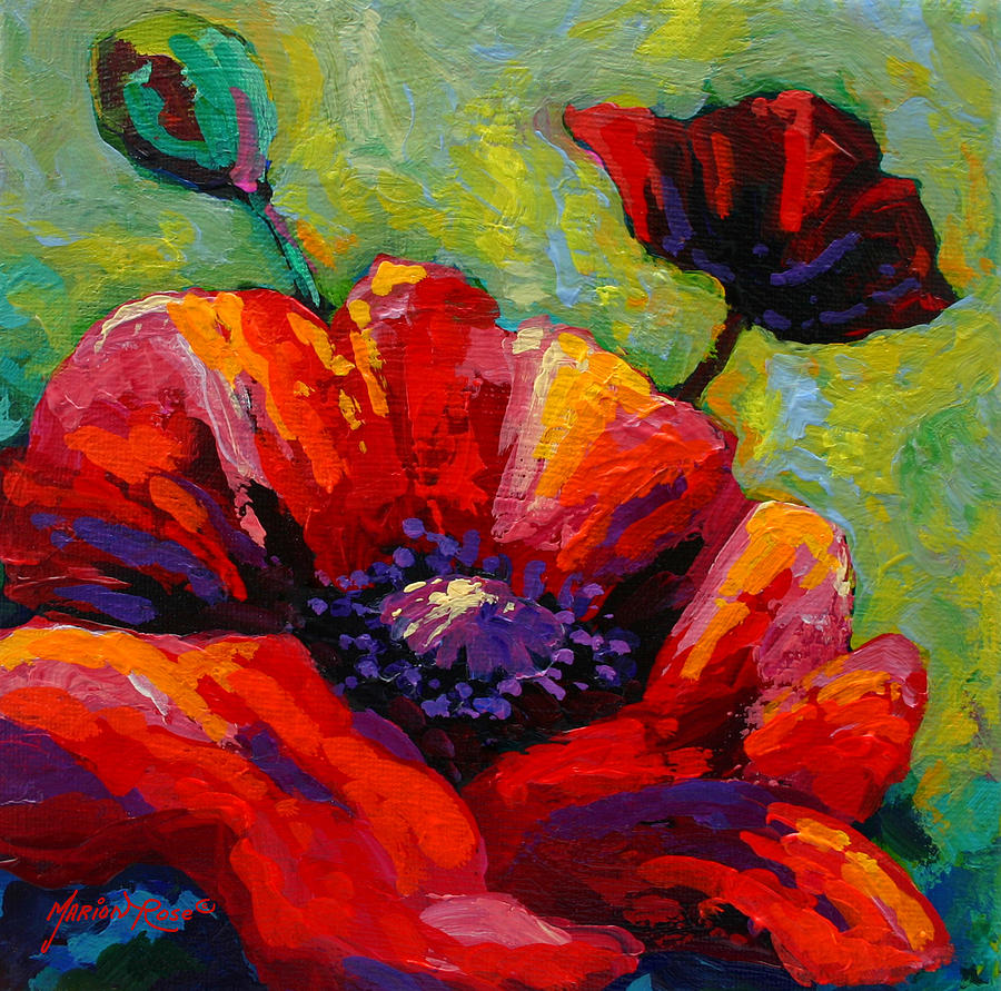 Poppies Painting - Poppy I by Marion Rose