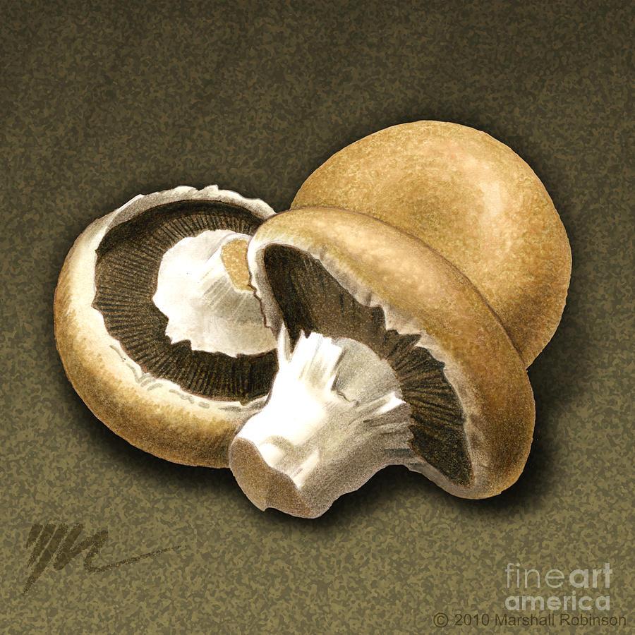 Portabello Painting - Portabello Mushrooms by Marshall Robinson
