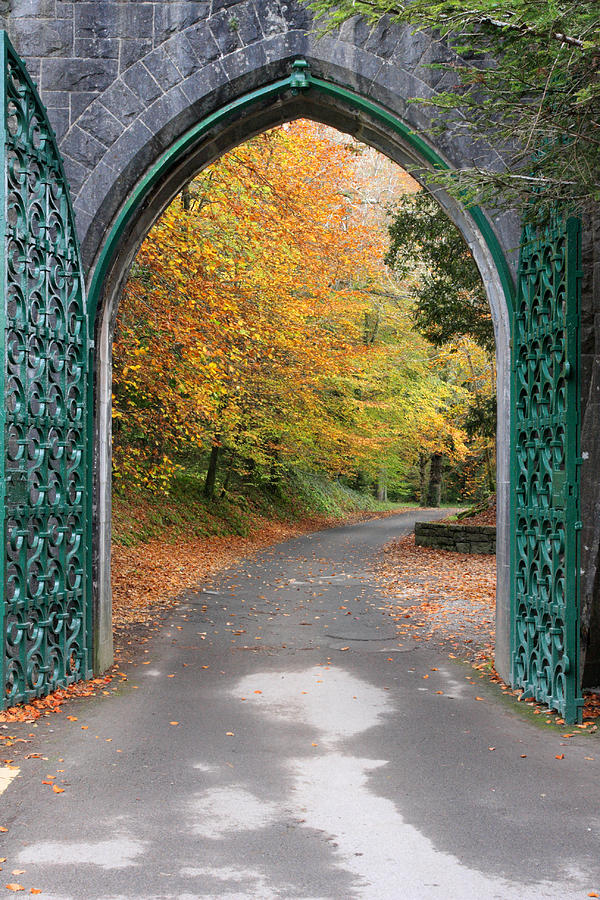 Portal To The Colorful Autumn Season Photograph