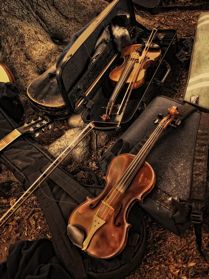 Violin Photograph - Possibilities by Robin-lee Vieira
