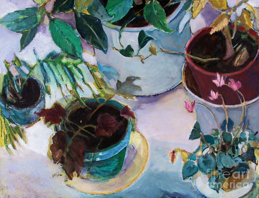 Potted Plants Painting
