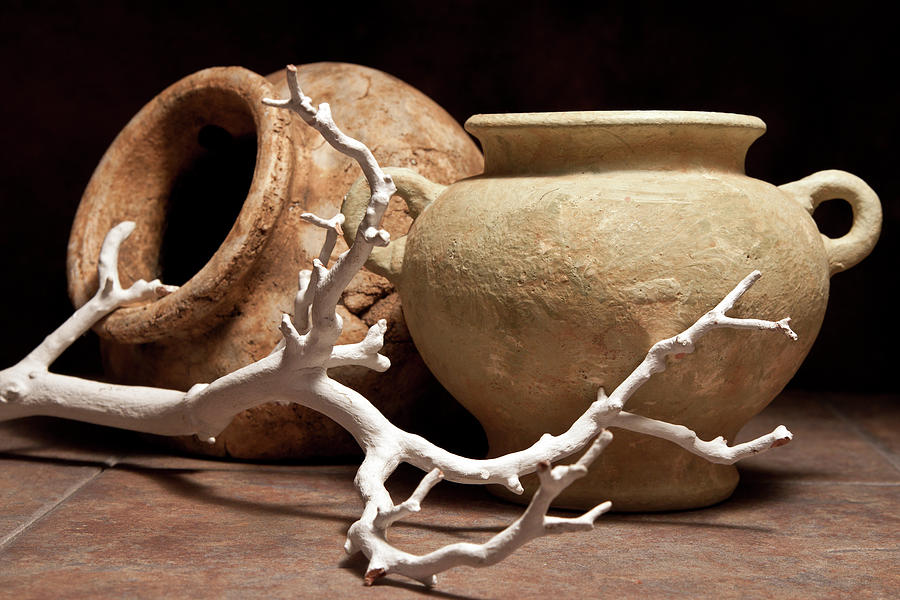Pottery Photograph - Pottery With Branch II by Tom Mc Nemar