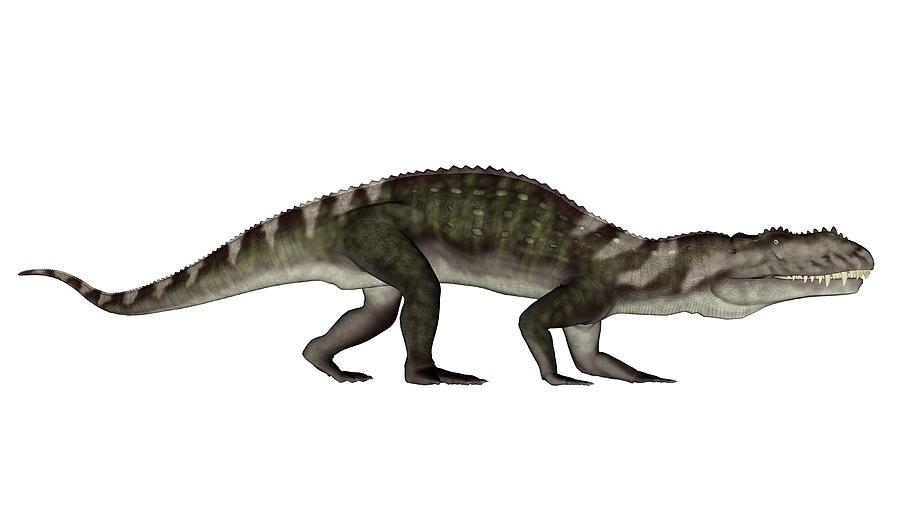 Dinosaur Digital Art - Prestosuchus Dinosaur Walking - 3d Render by ...