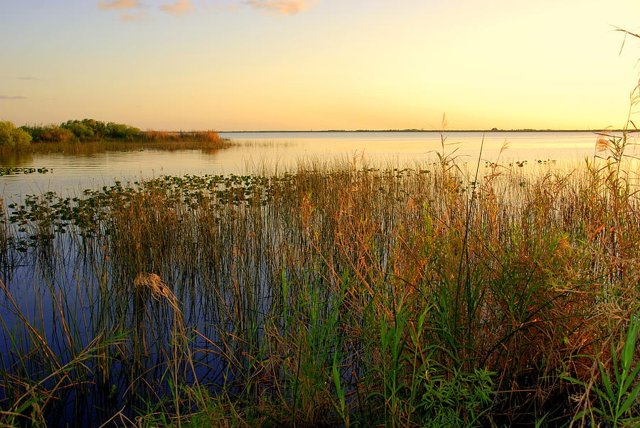 Pretty Evening At The Lake Photograph