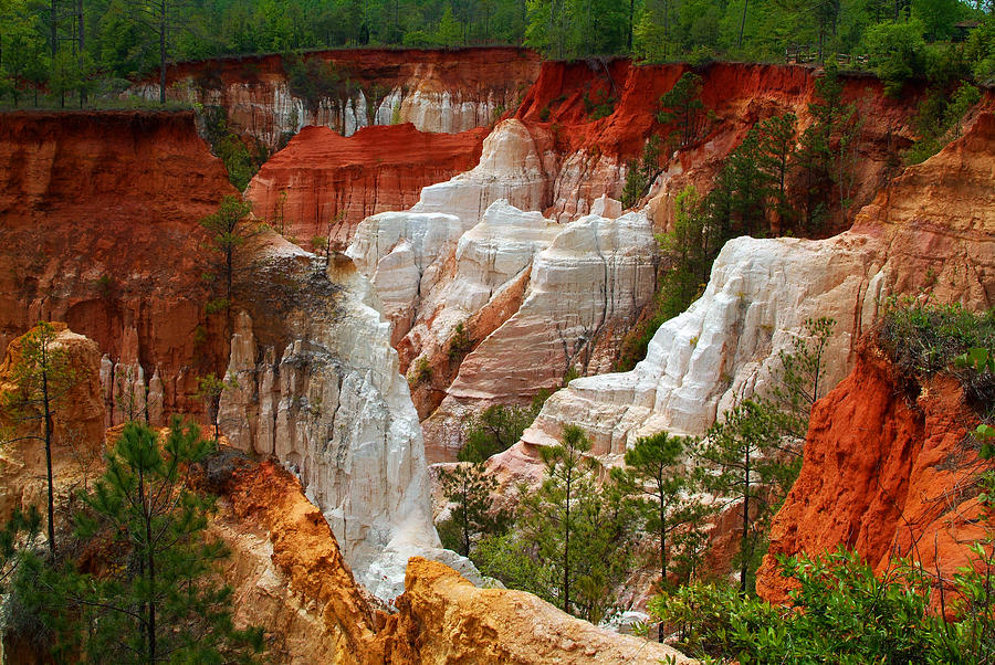 grand canyon tour company with Providence Canyon Ga Robert Walters on Grandview Sunset Grand Canyon National Park Arizona Brian Harig likewise Ethel M Chocolate Factory further Santiago Hop On Hop Off Tour furthermore Providence Canyon Ga Robert Walters likewise 9561442552.