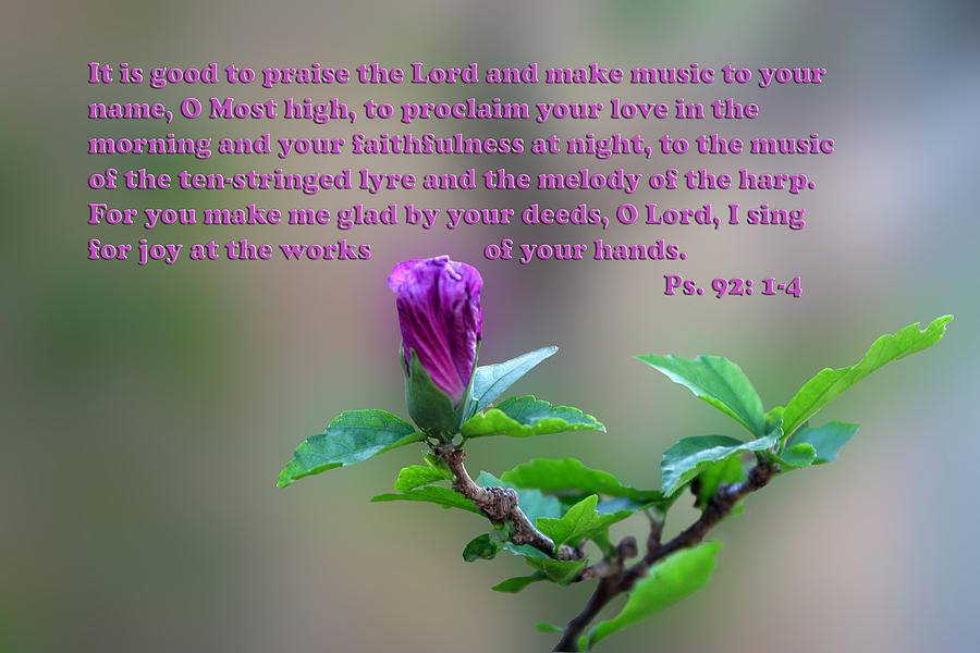 Scripture Photograph - Psalms Scripture With Floral Bud by Linda Phelps