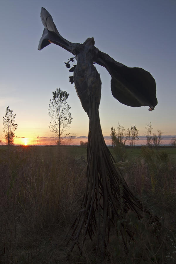 Public Art Photograph - Public Art At Sun Rise by Sven Brogren