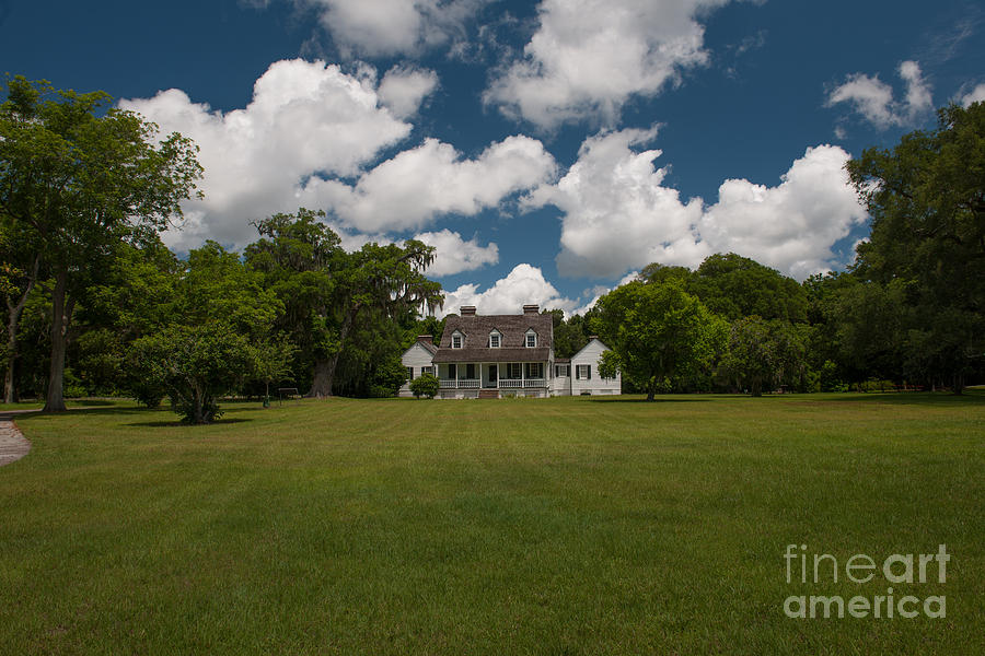 Puffy White Clouds Over Pinckney Plantation Photograph