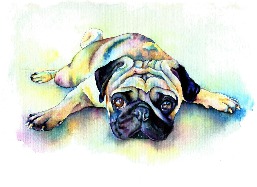 Fawn Pug Laying Painting - Pug Laying Flat by Christy  Freeman