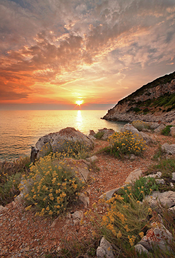 Vertical Photograph - Punta Rossa by Paolo Corsetti