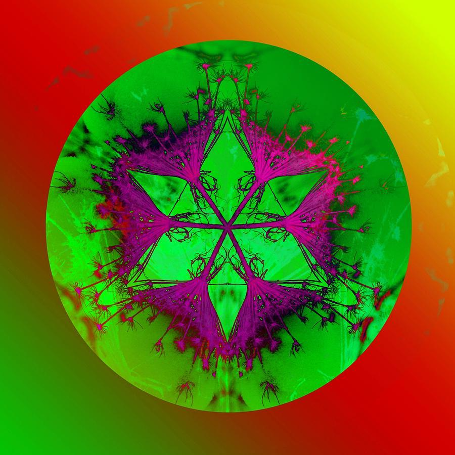 Mandala Photograph - Purple Pentagram by Brigita Tekavcic