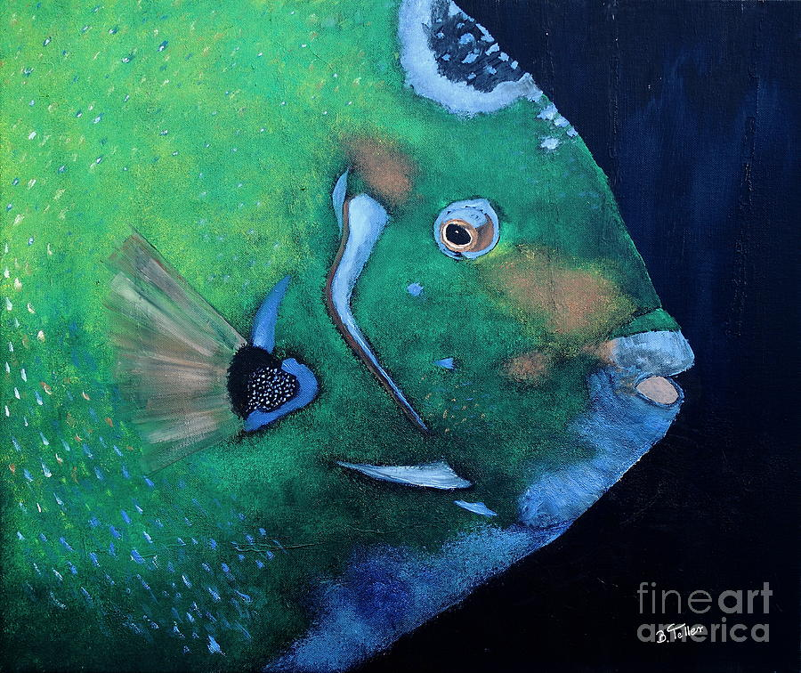 Queen Angelfish Painting