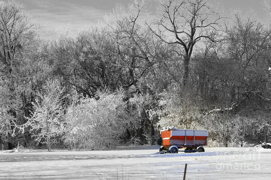 Snow Photograph - Radio Flyer by Julie Lueders