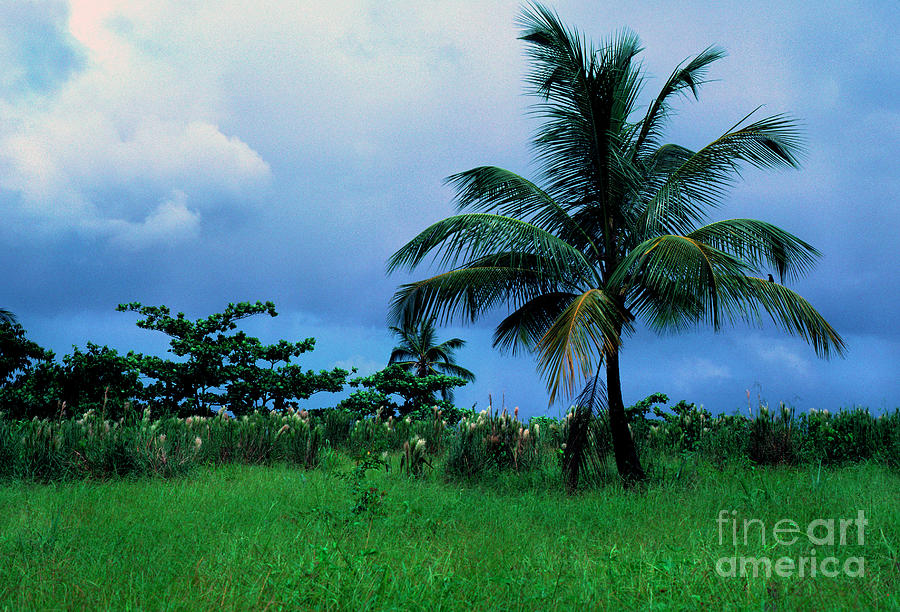 Rain Clouds Photograph - Rain Cloudsover Dominica by Thomas R Fletcher