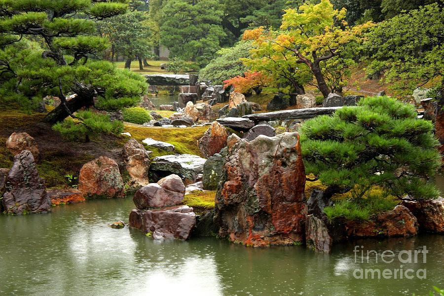 Japan Photograph - Rain On Kyoto Garden by Carol Groenen