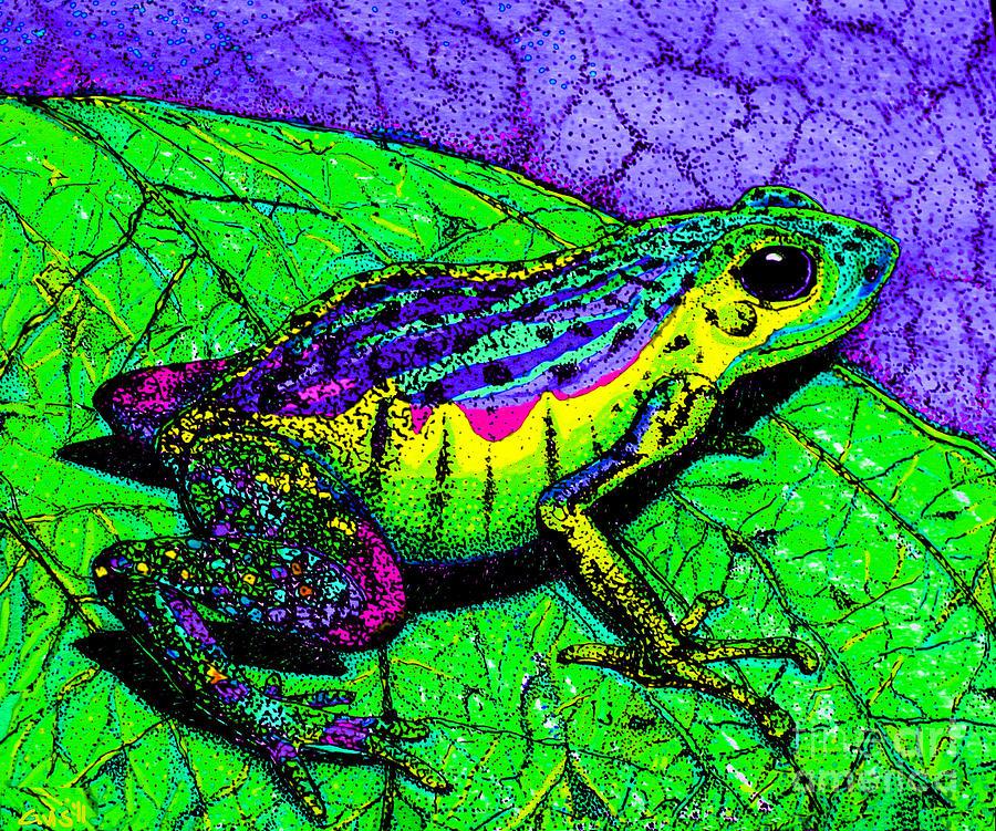 Frog Drawing - Rainbow Frog 2 by Nick Gustafson
