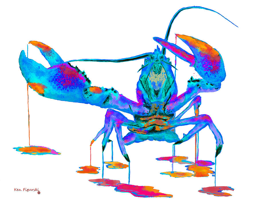 Related Keywords & Suggestions for rainbow lobster