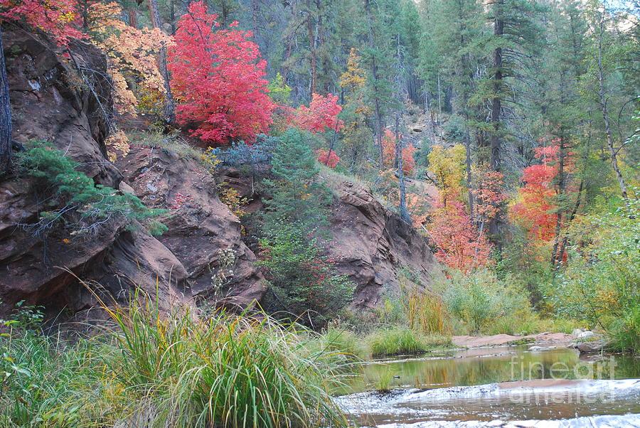 Sedona Photograph - Rainbow Of The Season With River by Heather Kirk