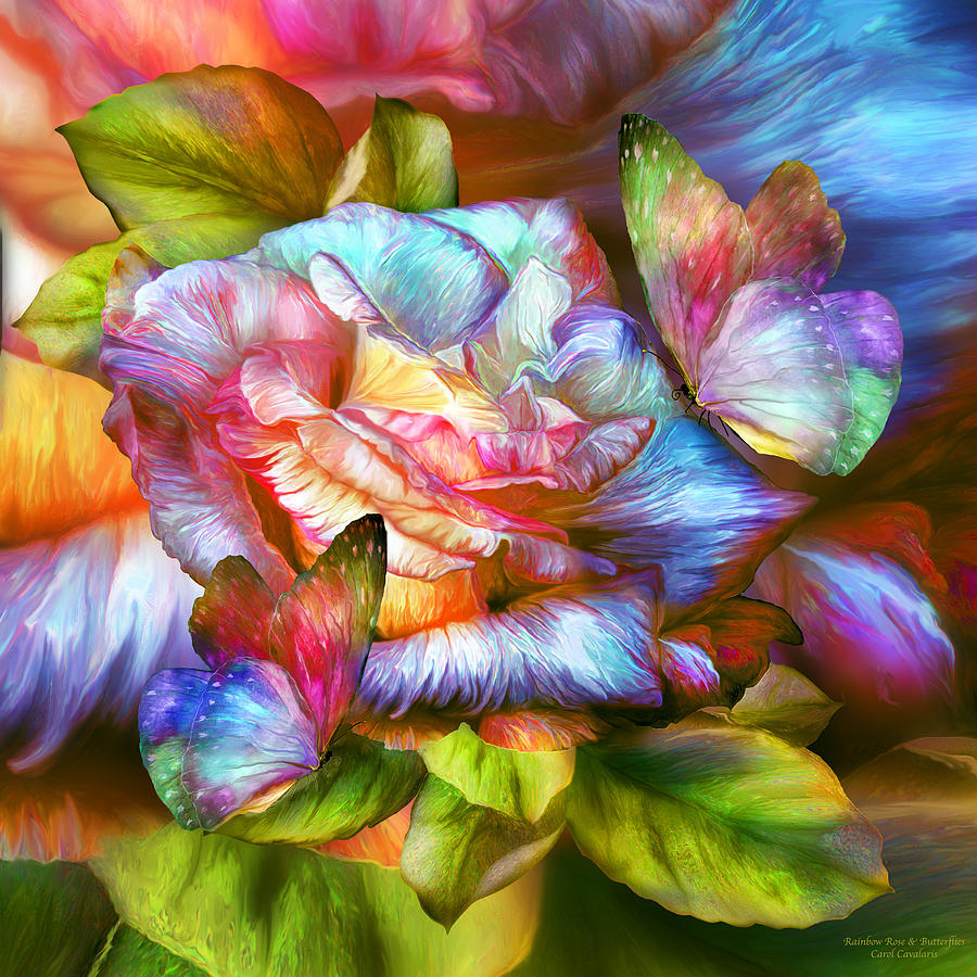 Rainbow Rose And Butterflies Mixed Media By Carol Cavalaris