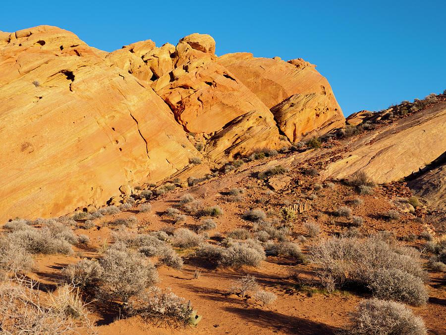 Desert Photograph - Rainbow Vista by Rae Tucker