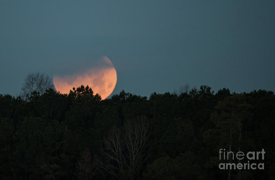 Rare Moon Event Photograph