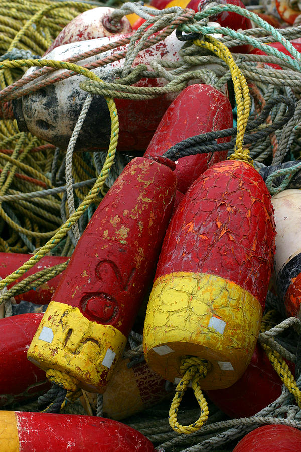 Fishing Photograph - Red And Yellow Buoys by Carol Leigh