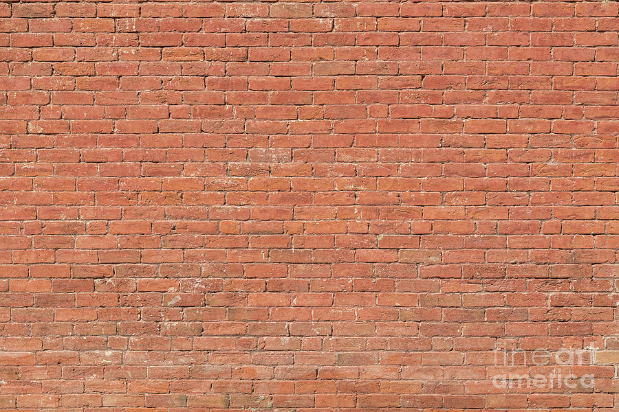 Red Brick Wall Photograph