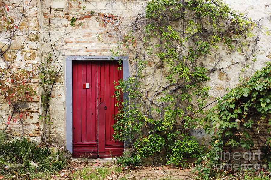 Red door in old brick and stone cottage photograph by for American brick and stone