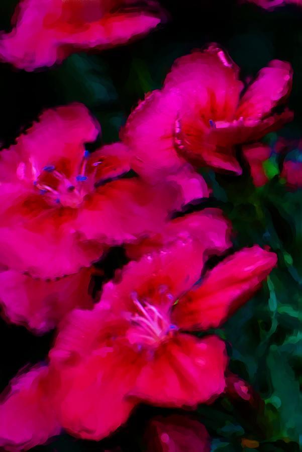 Floral Digital Art - Red Floral Study by David Lane