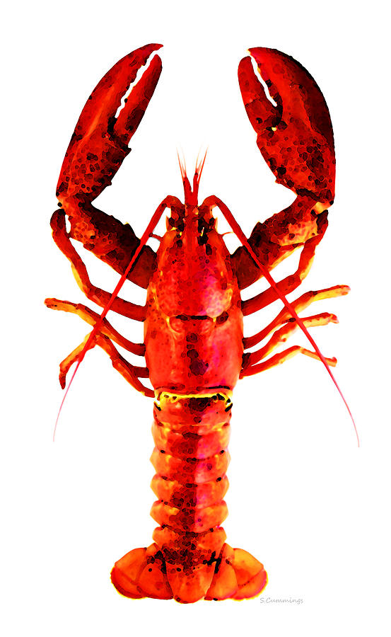 Lobster Painting - Red Lobster - Full Body Seafood Art by Sharon Cummings