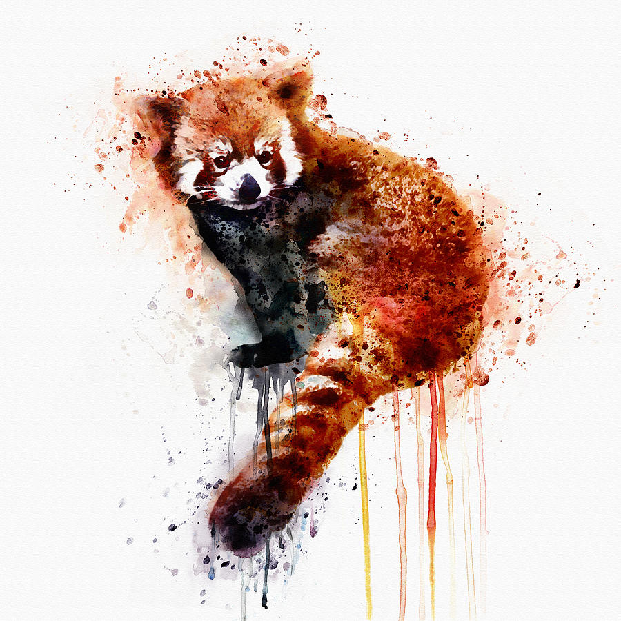 Red Panda Mixed Media By Marian Voicu