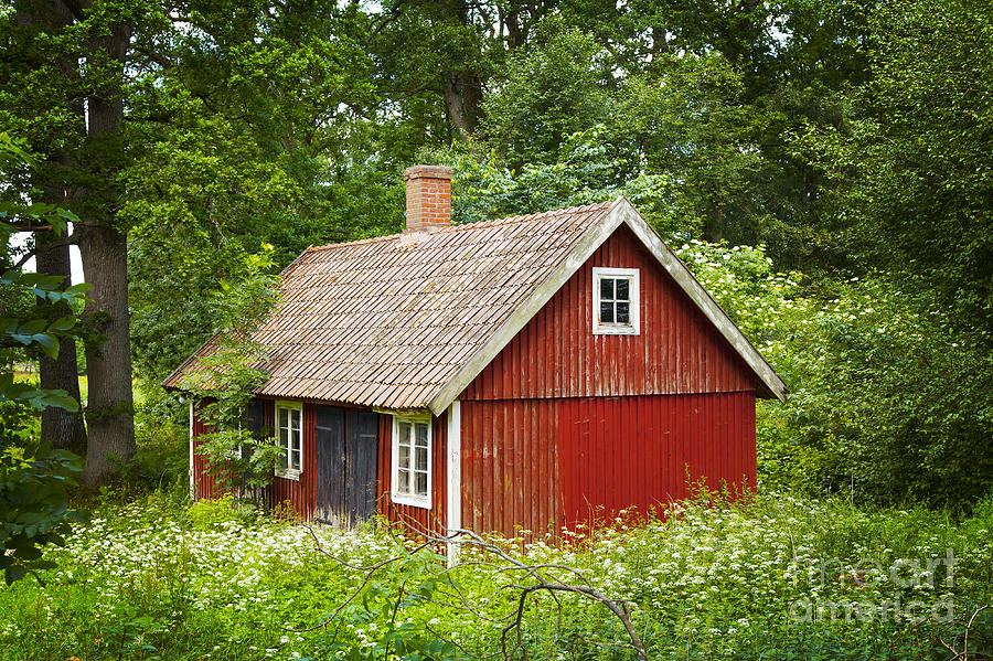 Red Swedish Cottage Photograph By Sophie Mcaulay