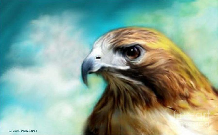 Red  Digital Art - Red Tail Hawk  by Crispin  Delgado