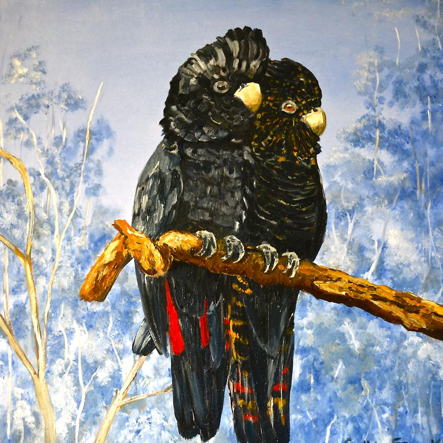 Red Tailed Black Cockatoo Painting