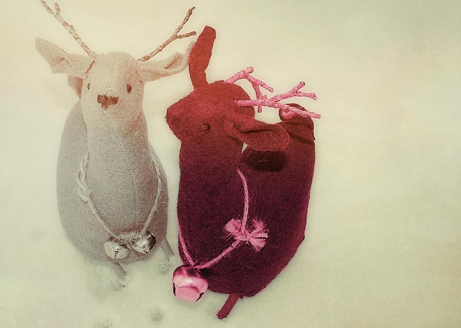 Reindeer Dash Photograph