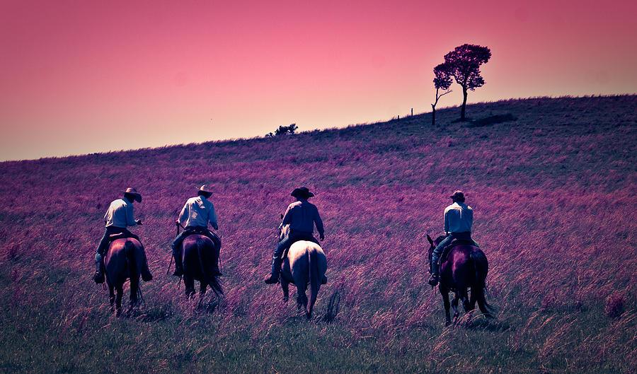 """riders of the sage""的图片搜索结果"