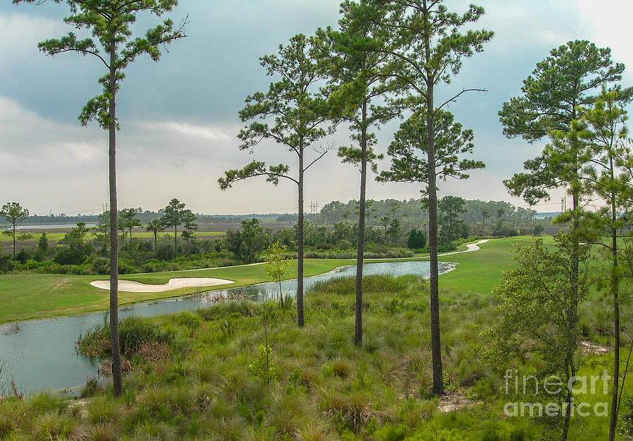 Rivertowne Country Club Golf Course In Charleston Sc Photograph