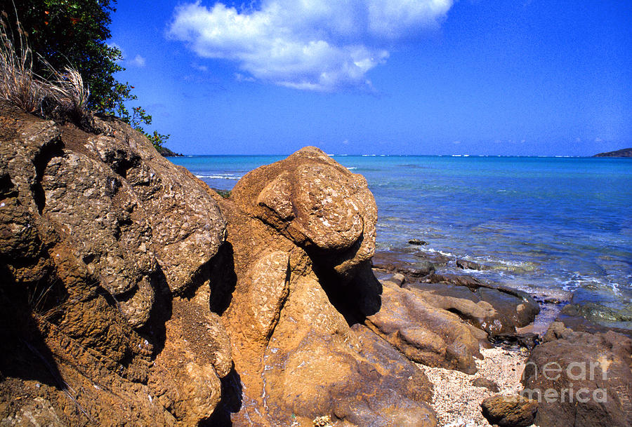 Puerto Rico Photograph - Rocky Shoreline by Thomas R Fletcher