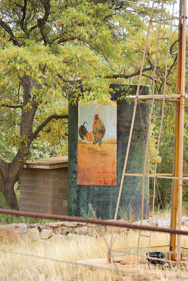 Fine Art Photograph - Rooster Water Tank by Donna Greene