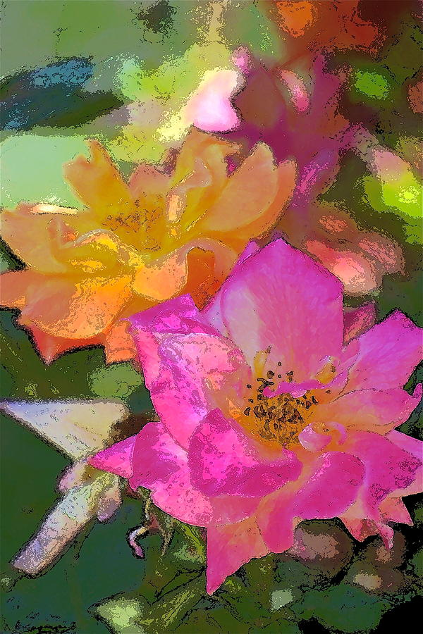 Floral Photograph - Rose 114 by Pamela Cooper