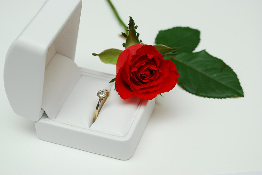 Valentine Photograph - Rose And Diamond Ring by Terence Davis